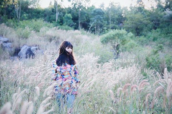 Sự tích hoa cỏ may - Truyện cổ tích về tình yêu chung thủy của người phụ nữ Việt