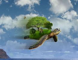 Rùa học bay – Truyện ngụ ngôn ý nghĩa cho bé